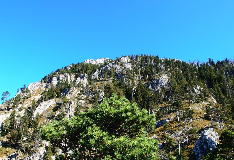 na Traunstein cestou Naturfreundesteig